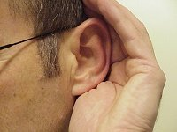 Perforated Eardrum  - Audiology - Annapolis - Columbia - Glen Burnie - Kent Island - Laurel - Odenton, MD